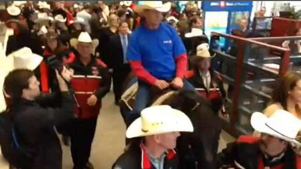 The Calgary Grey Cup Committee takes a horse through the BMO headquarters in Toronto