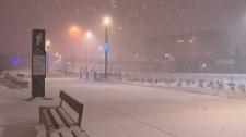 Snowfall in Calgary