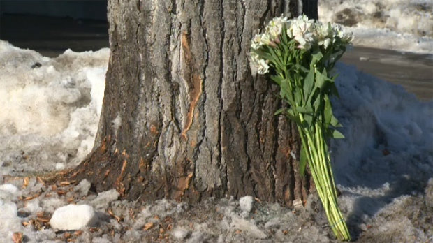 Flowers have been placed at the base of a tree along Varsity Estates Drive following an early morning crash that claimed the life of a 20-year-old man