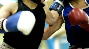 Two boxers are shown in this file photo.