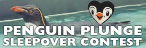Penguin Plunge sleepover contest button