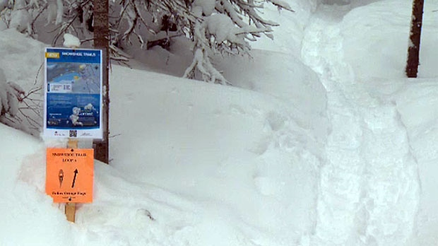 Conditions in the mountain parks won't be getting much better in the new few days, officials say, and back country enthusiasts will have to take extra caution to avoid triggering and being caught in avalanches.