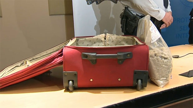 Smuggling snakes in false bottom suitcase
