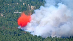 A wildfire that broke out Thursday afternoon is threatening almost 600 homes in West Kelowna, B.c. July 17, 2014. (Catanet.net)