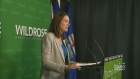 At three staff members of the Wildrose Party have
