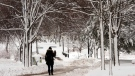 A woman walks through a snow-covered park after the region received 30cm of snow in the first winter storm of the season in Montreal on Thursday, Dec. 11, 2014. (Ryan Remiorz / THE CANADIAN PRESS)