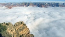 Total cloud inversion returns to Grand Canyon