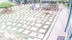 Extended: Quake capture on security camera