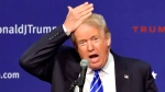 Republican presidential candidate Donald Trump pulls his hair back to show that it is not a toupee while speaking during a rally at the TD Convention Center, Thursday, Aug. 27, 2015, in Greenville, S.C. (AP / Richard Shiro)