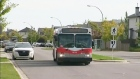 CTV Calgary: New investment for transit initiative