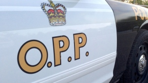 An OPP cruiser is seen in this undated photo.