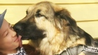 CTV Calgary: Dog's actions save home