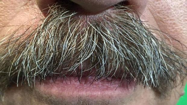 David Spence Moustache