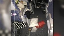Debris on board flight