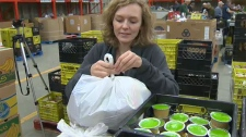 WAM, Weekends And More, Calgary Food Bank, CBE, fo