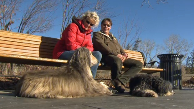 David Scheick and Cindy Adams, and their dogs, enjoy a moment in the sun along the Bow River pathway