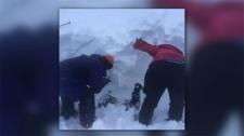 avalanche, Bow Hut avalanche, Bow Hut, Todd Wyatt,