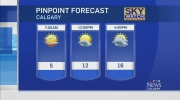CTV Calgary: Forecast: Ideal marathon conditions?