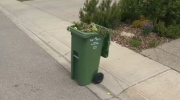 Green bins are coming