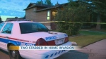 Two stabbed in home invasion