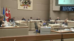 Calgary city council voted unanimously in favour of a zero tax increase for 2017 after a long debate on Monday.