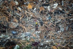 A firefighter examines debris after a house explosion in Mississauga, Ont., Tuesday, June 28, 2016. THE CANADIAN PRESS/Eduardo Lima