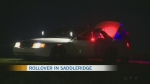 Police investigate overnight incidents