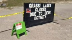 Grassi Lakes - closed due to bear activity