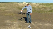 Finding weeds with drones
