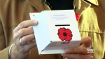CTV Calgary: Protecting the poppy boxes