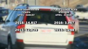 Alberta registration and licence plate statistics