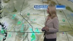 CTV Calgary: No sign of snow yet