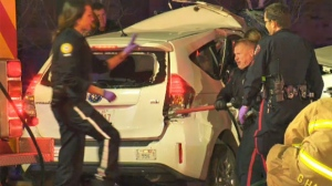 Fatal crash Macleod Tr and 12 Ave SE