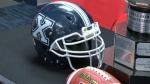 St. Francis-Xavier helmet - Mitchell Bowl