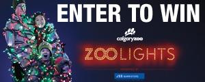 Zoolights Carousel