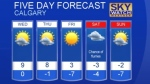 Calgary weather for January 17, 2017