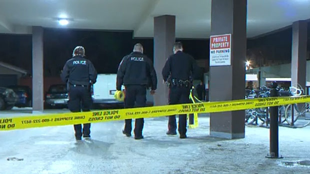 Police are investigating after shots were fired in Kensington on Wednesday night and say the situation could have been much worse.