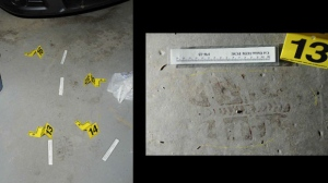 Police investigators found a bloody footprint inside the garage of the Liknes home on June 29, 2014.
