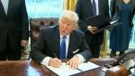 CTV Calgary: Trump approves Keystone XL