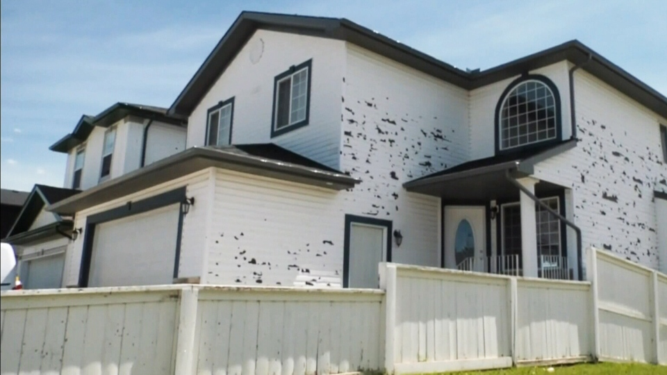 Province agrees to cover hail damage