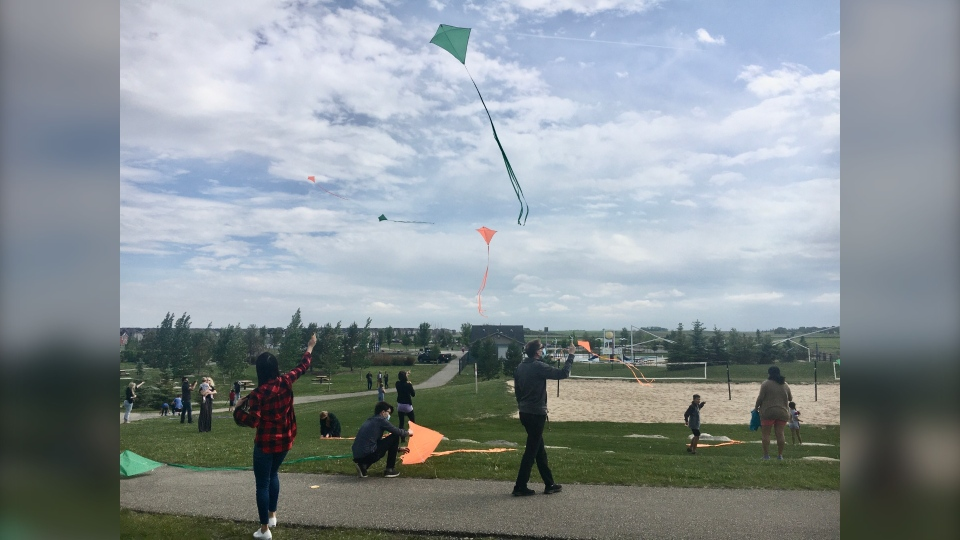 calgary, local businesses, genesis land, kites, ai