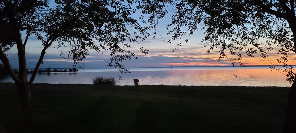 Photo of the Day, July 7, Spruce Point