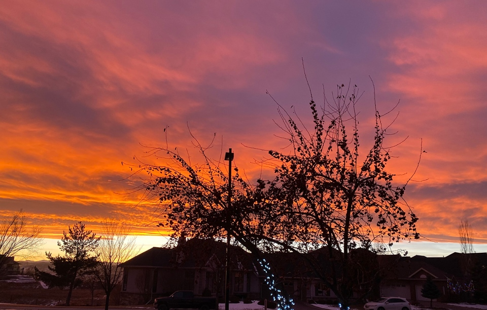 Calgary, sunset, Cranston, Lily