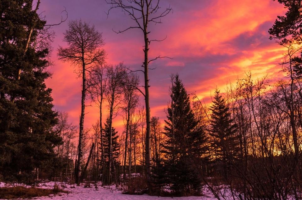 Priddis, sunset, Calgary, Lynn