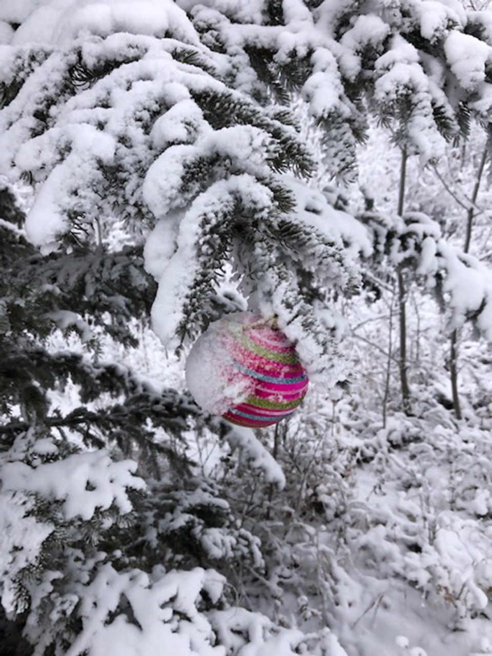 Calgary, christmas ornament, Leslie,