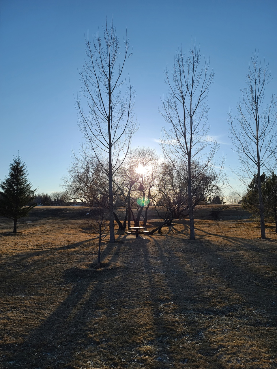 Treena, Brooks, morning, sunrise