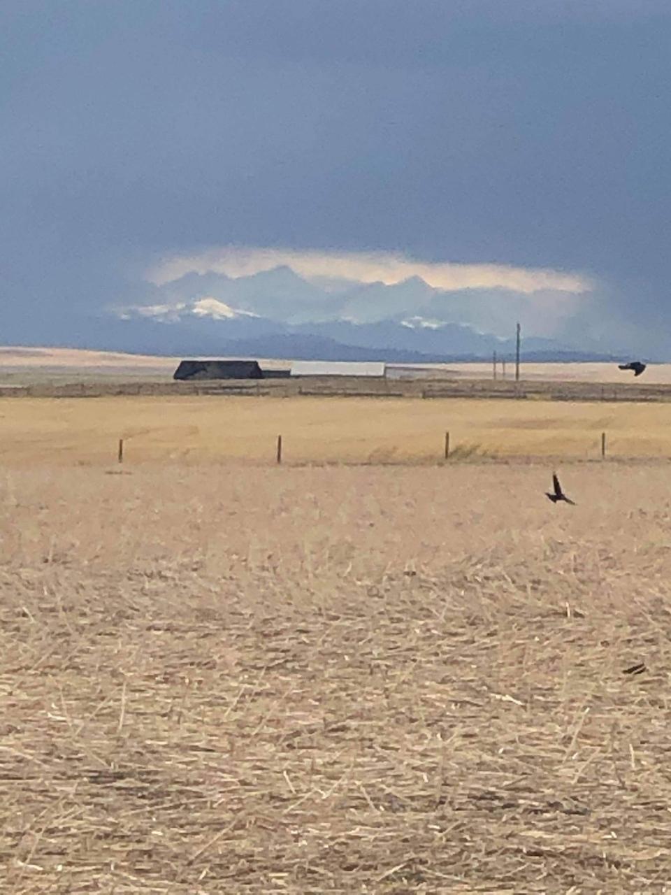 Southern Alberta, rainshowers, Ellen,
