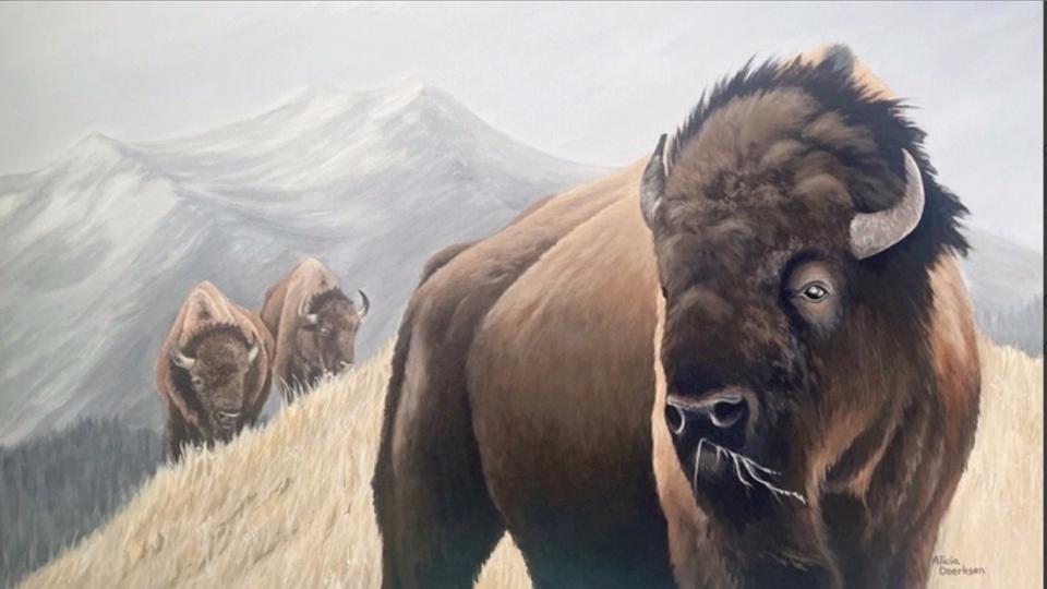 art, slopes, mining, buffalo
