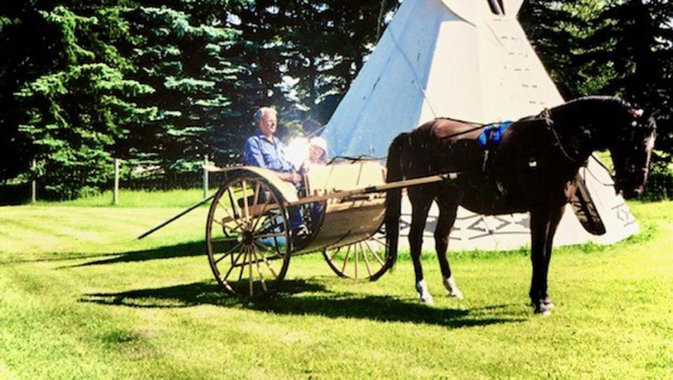 calgary, western canada, lee bowie, penhold, horse