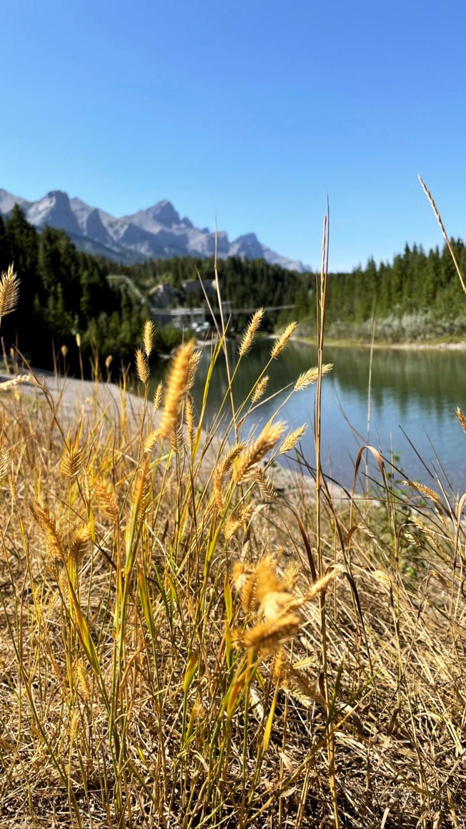 Natasha, Rockies, Rocky Mountains